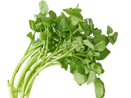 Water Cress - Quality Plus Aesthetic International Co., Ltd.
