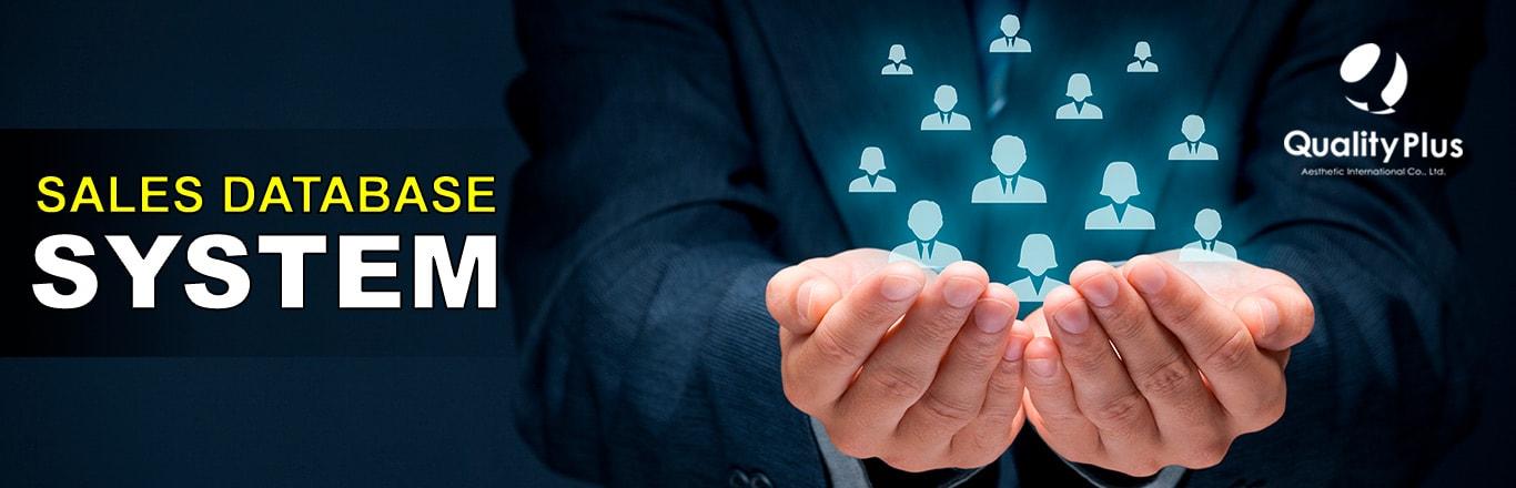Sales Database System