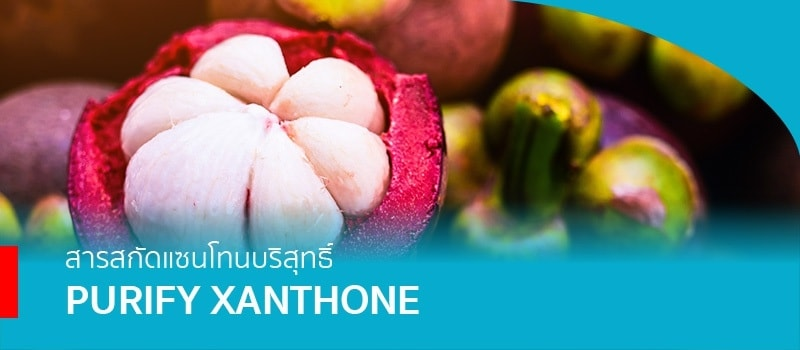Purify Xanthone