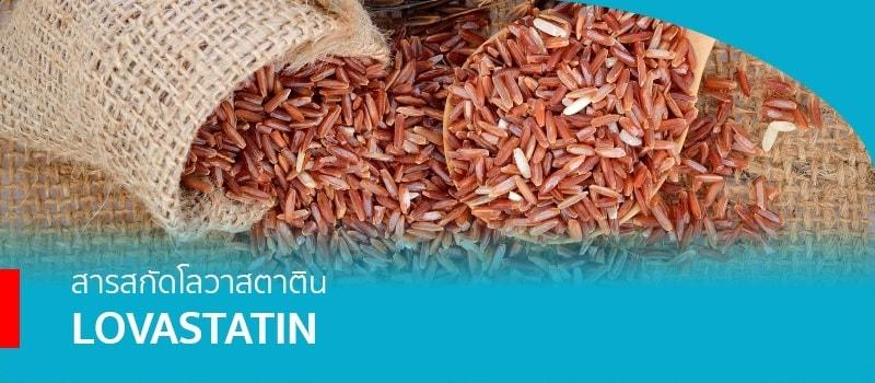 สารสกัดโลวาสตาติน (Lovastatin) จากข้าวแดง