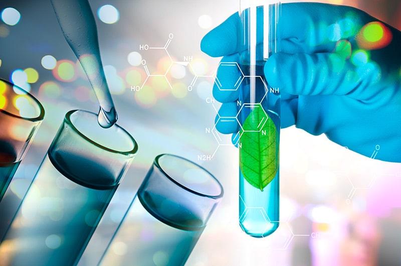 การวิจัยเพื่อกำหนดแนวทางในการสกัดหรือผลิตสารสกัด รวมถึงการขยายกำลังการผลิต (Extraction Method and Production Scale)