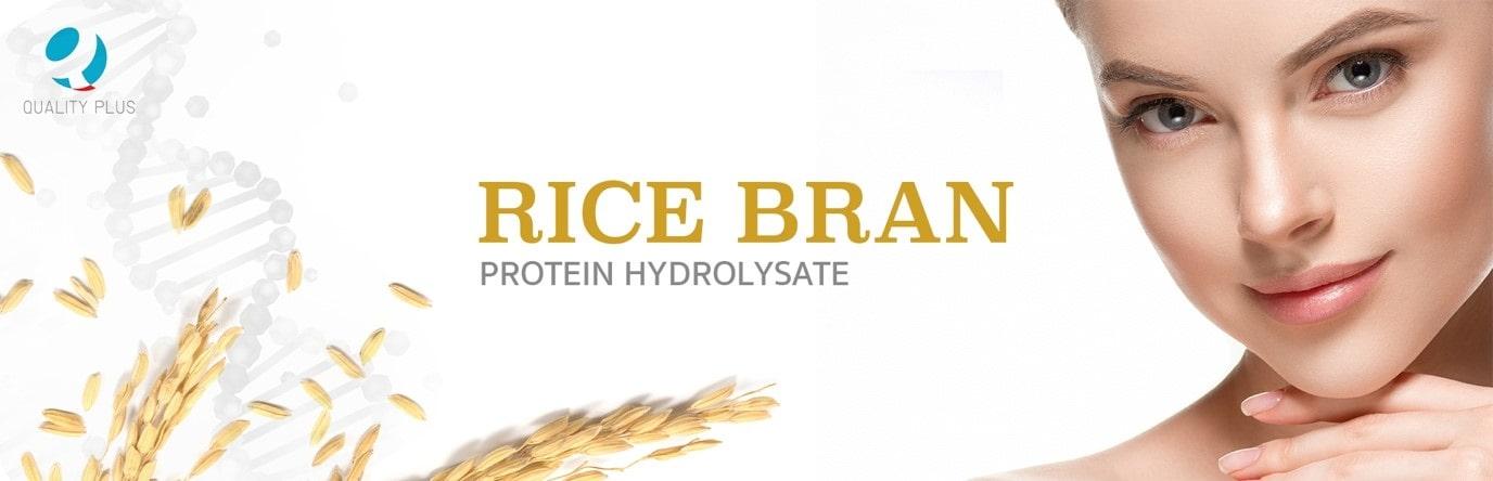 Rice Bran - Protein Hydrolysate