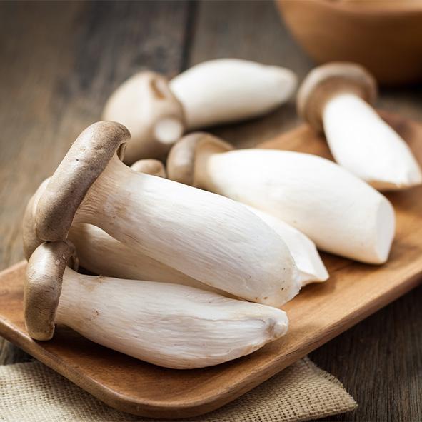 เห็ดออรินจิ (King Oyster Mushroom or Eryngii Mushroom)