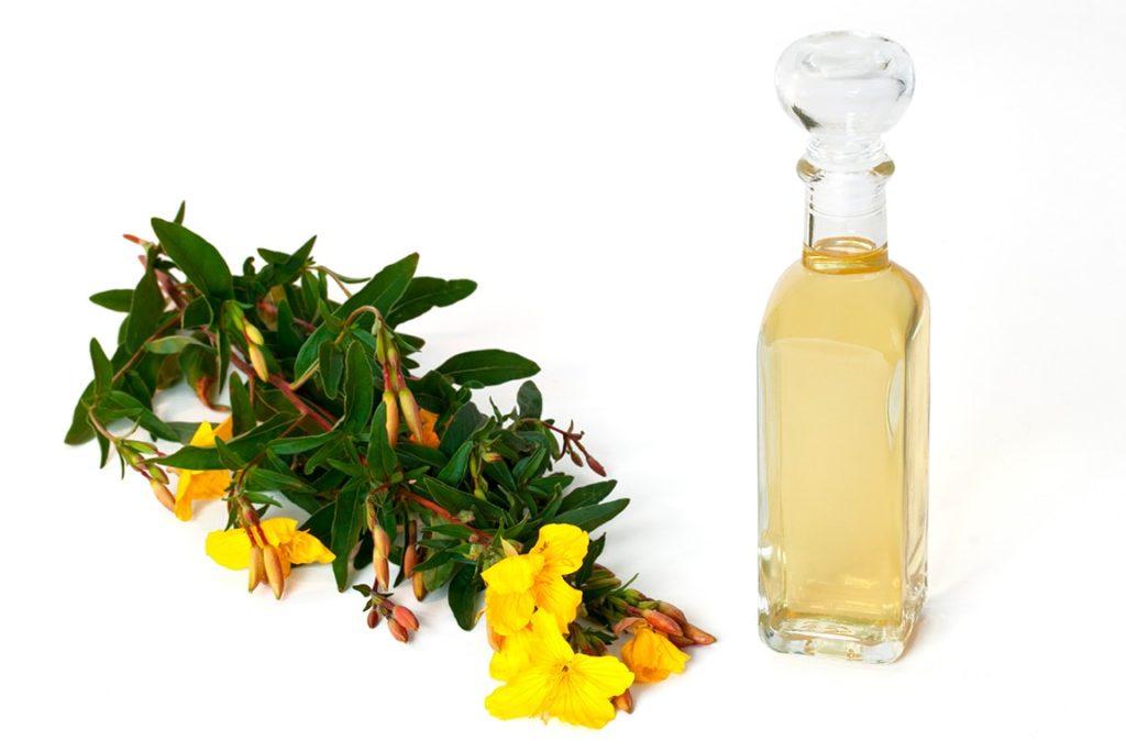 Evening Primrose Oil น้ำมันสกัดจากเมล็ดดอกอีฟนิ่งพริมโรส
