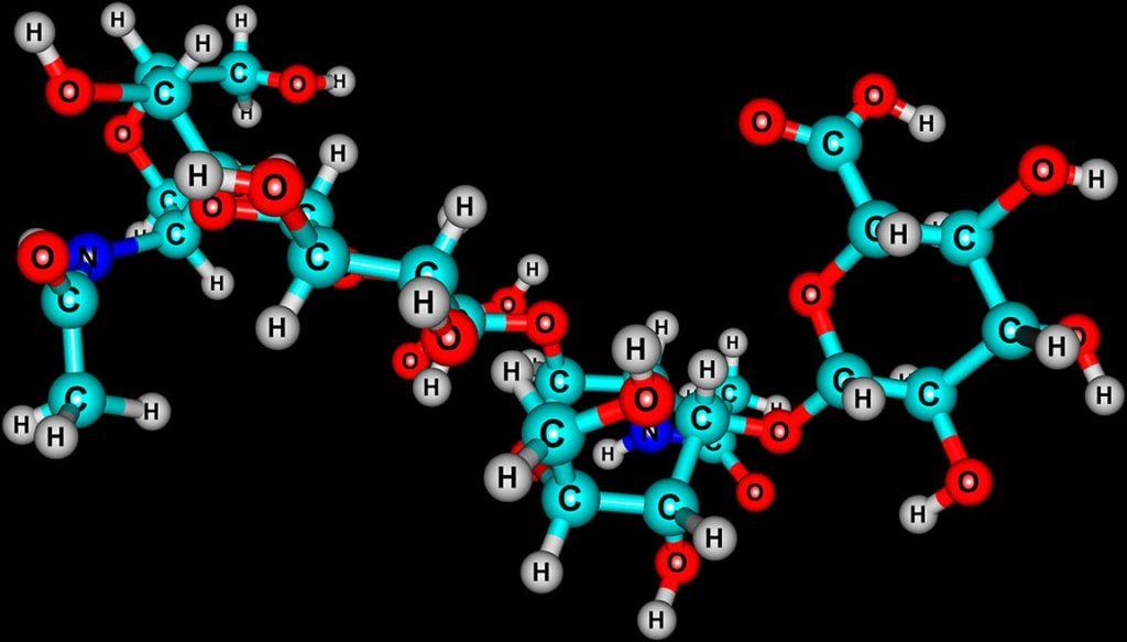 Glycosaminoglycan เป็นสารสกัดจากปลาทะเลลึก