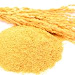Hydrolyzed Rice Bran Protein โปรตีนสกัดจากราข้าวหอมมะลิ