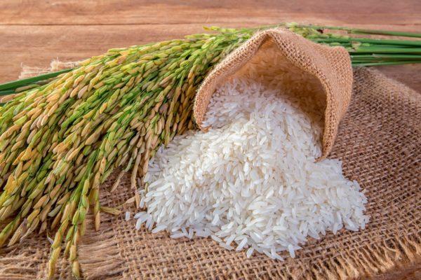 Rice Albumin สารสกัดโปรตีนอัลบูมินจากรำข้าวหอมมะลิ ช่วยต่อต้านอนุมูลอิสระ ลดริ้วรอย